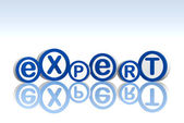 Expert in blue circles — Stock Photo
