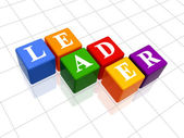 Leader in colour 2 — Stock Photo