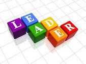 Líder en color — Foto de Stock