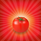 Sunburst Background With Red Tomato — Stock Vector