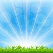 Green Background With Sunburst — Stock Vector
