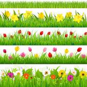 Conjunto de fronteras de flor — Vector de stock