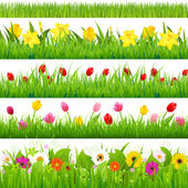 Flower Borders Set — Vetorial Stock