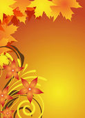 Autumn flyer design — Vector de stock