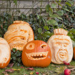 Orange halloween pumpkins — Stock Photo #8794168