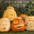 Orange halloween pumpkins — Stock Photo #8794559