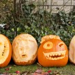 Orange halloween pumpkins — Stock Photo