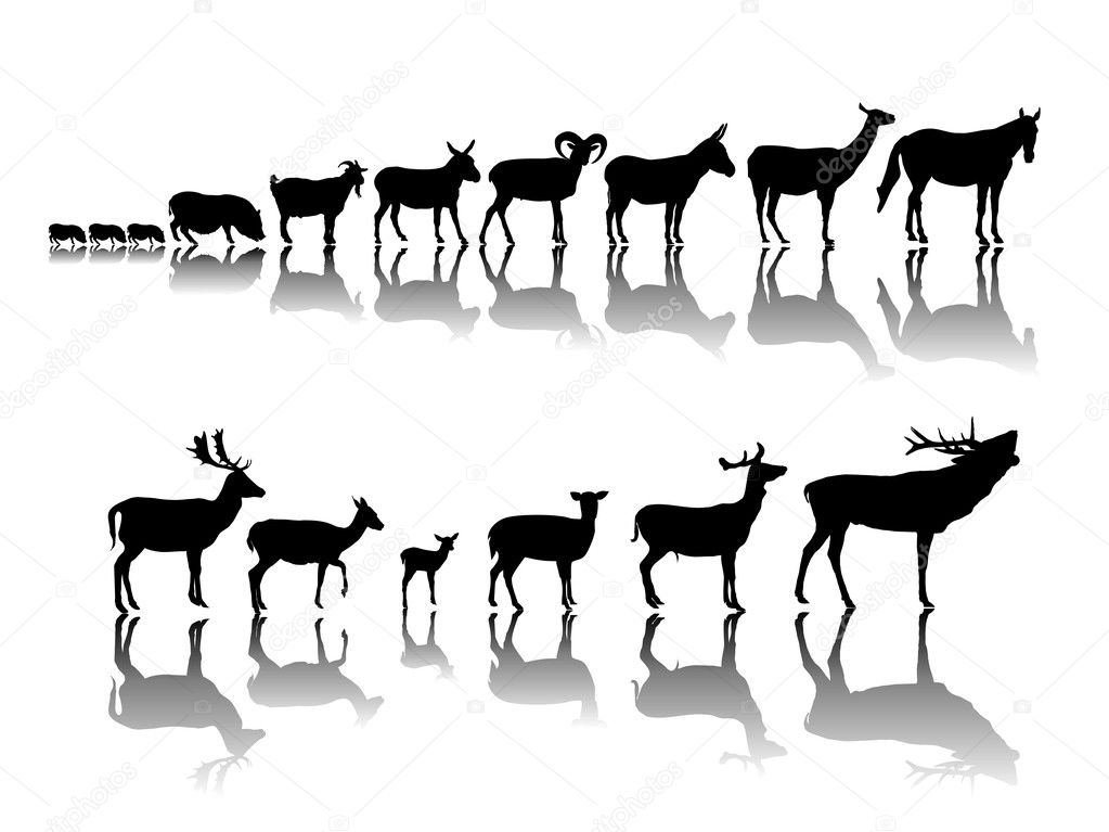  group of hoofed animals with shadows  Stock Vector #9722427
