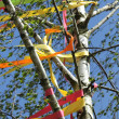 Stock Photo: Maypole