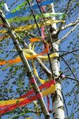 Maypole — Stock Photo