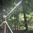 Sprinkler in the park - Stock Photo
