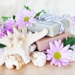 Luxury Soap with Flowers and Shells — Stock Photo