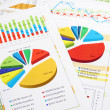 Sales Report in Digits, Graphs and Charts — Stock Photo #9244923
