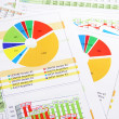 Colorful Sales Report in Digits, Graphs and Charts — Stock Photo #9244964