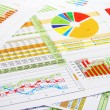 Stock Photo: Colorful Sales Report in Digits, Graphs and Charts
