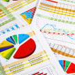 Stock Photo: Annual Report in Charts and Diagrams
