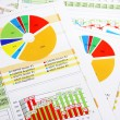 Stock Photo: Sales Report in Graphs and Charts