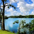 Gatun Lake — Stock Photo
