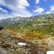 Stock Photo: Train from Skagway to White Pass