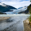 Mendenhall Glacier — Stock Photo #9607516