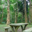 Picnic place in forest — Stock Photo