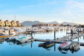 Yachts in the golden coast — Stock Photo