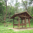 Pavilion in forest at day — Stock Photo