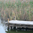 Wooden pier in tranquil lake at morning — Stock Photo #9467473