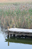 Wooden pier in tranquil lake at morning — Stock Photo