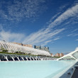 The City of Arts and Sciences Valencia — Stock Photo #10280880