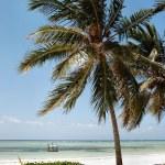 Zanzibar beach — Stock Photo