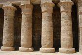 Egyptian pillars — Photo