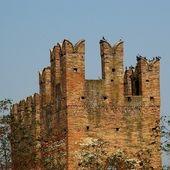 Italiano castello — Foto Stock
