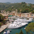 Portofino view — Stock Photo #8675060