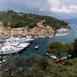 Portofino view — Stock Photo #8675138