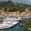 Stock Photo: Portofino view