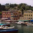 图库照片: Portofino view