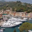 Portofino view — Stock Photo #8678320