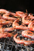 Grilled shrimps — Stockfoto