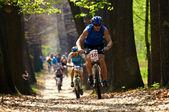 Mountain bike competitie — Stockfoto