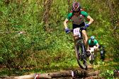 マウンテン バイクの競争 — ストック写真