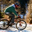 Mountain bike competition - Photo