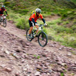 Adventure mountain bike competition — Stock Photo #10498271