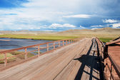 Oude houten brug in mongolië — Stockfoto