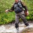 Fly-fishing — Stock Photo