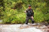 Pesca com mosca no riacho na floresta de montanha — Foto Stock