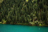Kolsay Lake in Tien-Shan mountain, Kazakhstan — Stock Photo