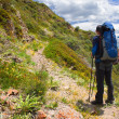 Hiker with backpack in mountains — Stock Photo
