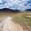 Royalty-Free Stock Photo: Roads in Mongolia