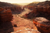 Canyon in the Kazakhstan — Stock Photo